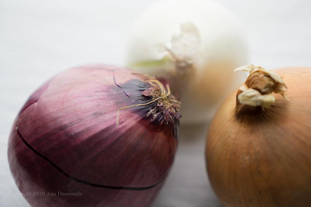 Onions (high key)