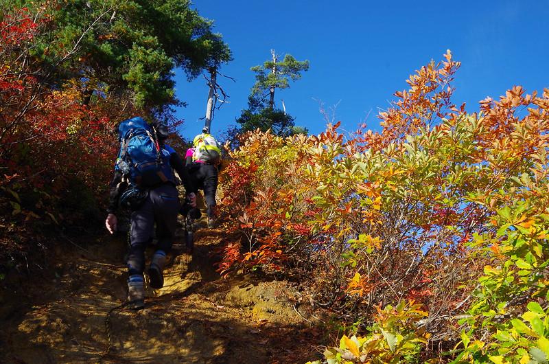 20141018-平ヶ岳saku-0023.jpg