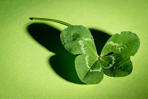 四つ葉のクローバー by pixabay