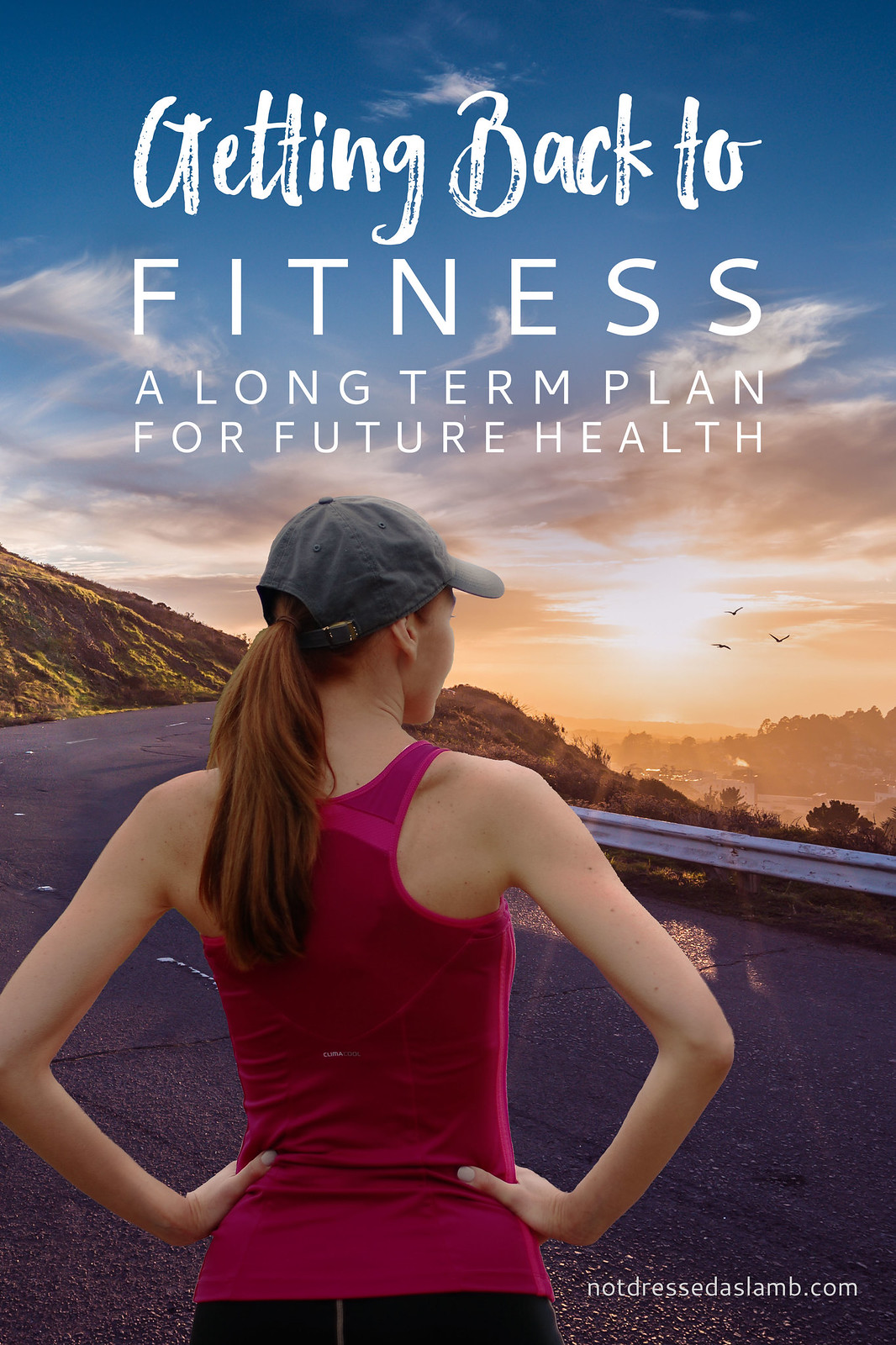 Getting Back to Fitness | A Long-Term Plan For Future Health (a Series)