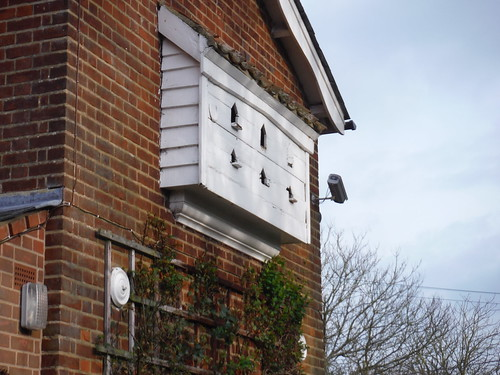 Dovecotes in Littlebury Green