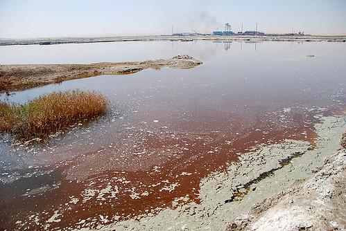 शहरों एवं फैक्ट्रियों का जल कई बिमारियों का कारण बन चुका है