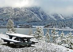 It's No Picnic, Tioga Lake, Yosemite 5-15