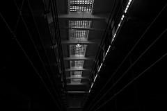 Depression is a Prison  stories