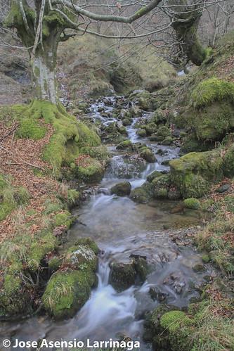 Parque Natural de Gorbeia #DePaseoConLarri #Flickr -2587