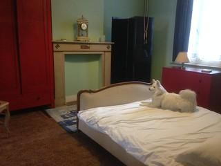 Magritte's bedroom