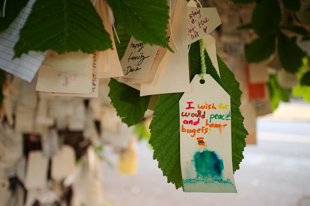 A wish on the Wishing Tree for world peace and hamburgers