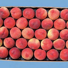 peaches-0124
