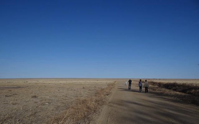 birders birding Colorado