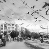 #prey before it is time to #pray - #crows #black #gray #blackandwhiteisworththefight #grey #urban