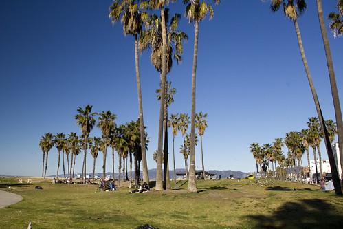 20 Venice Beach 10