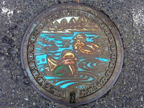 Ube Yamaguchi, manhole cover (山口県宇部市のマンホール)