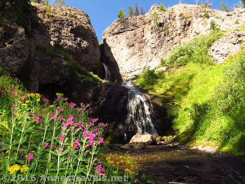 Dundee Falls, Shoshone National Forest, Wyoming