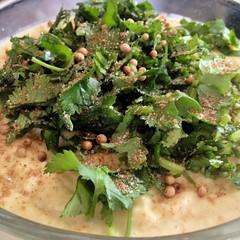 The cilantro/coriander hummus Myke & Kaela made, before mixing