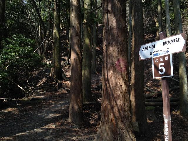 入道ヶ岳 北尾根 通報ポイント5