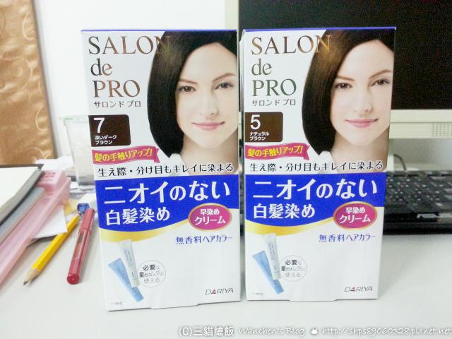 SALON 日本染髮劑推薦