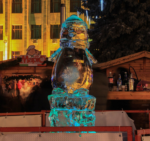 park christmas carnival winter cold art ice square penguin europe neon artistic market january freezing fair newyear ukraine christmasfair icesculpture zhytomir zhytomyr