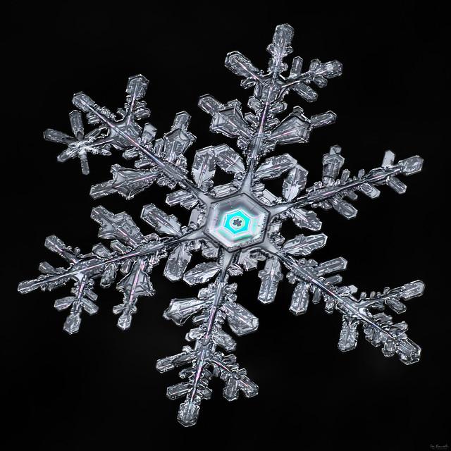 Snowflake-a-Day #50