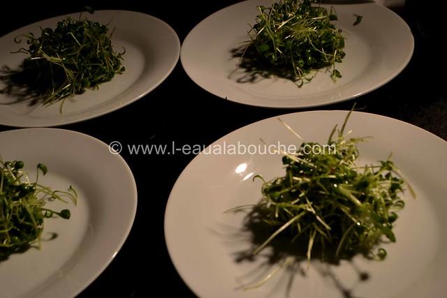 Suprême de Filet de Truite & Cresson & Perles au Balsamique et Citron © Ana Luthi Tous droits réservés 0005