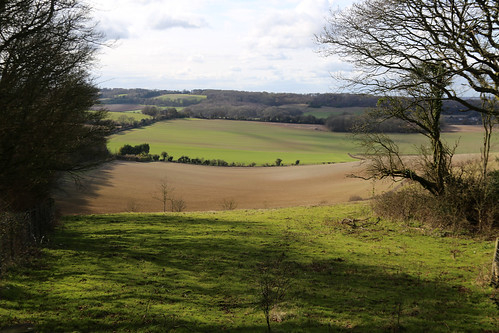The North Downs near Crundale