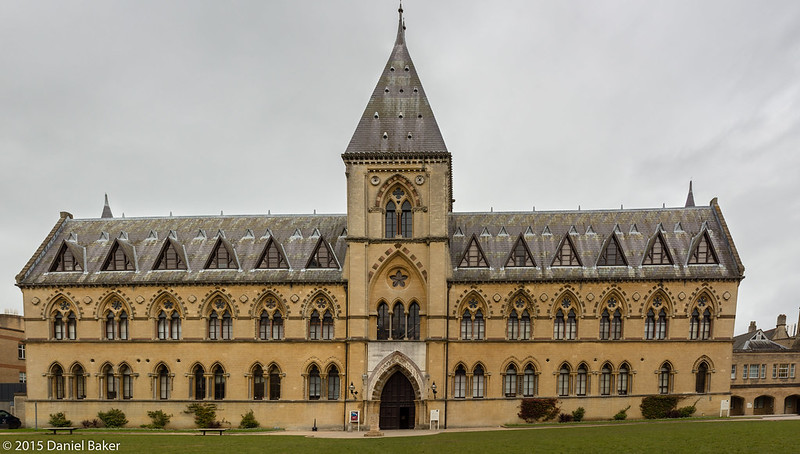 Picture of The Oxford University Museum of Natural History