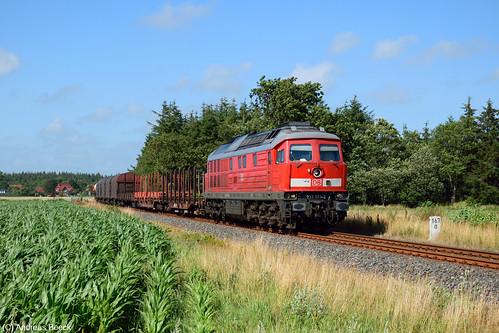 Holm (Strecke Tondern - Niebüll), 21.07.15, 233 321 mit EZ 47413 nach Maschen Rbf