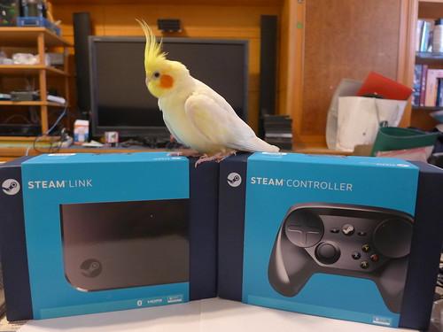 Steam Link & Controller