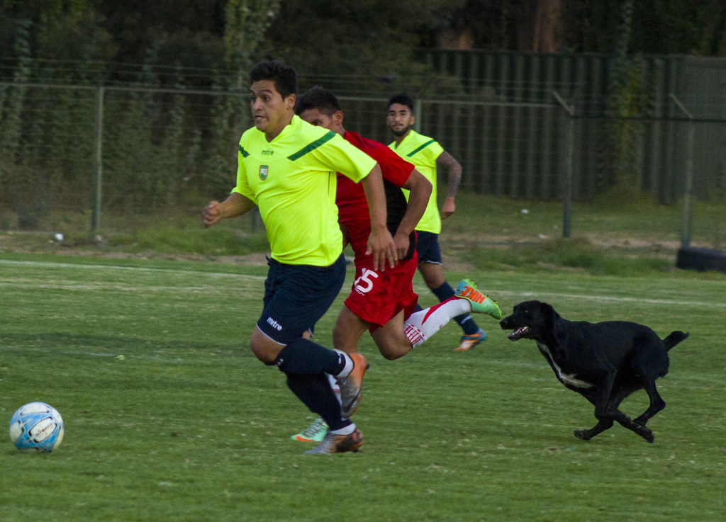 Deportes Limache 1-1 AC Colina