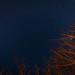 Dark Sky Night by evxe