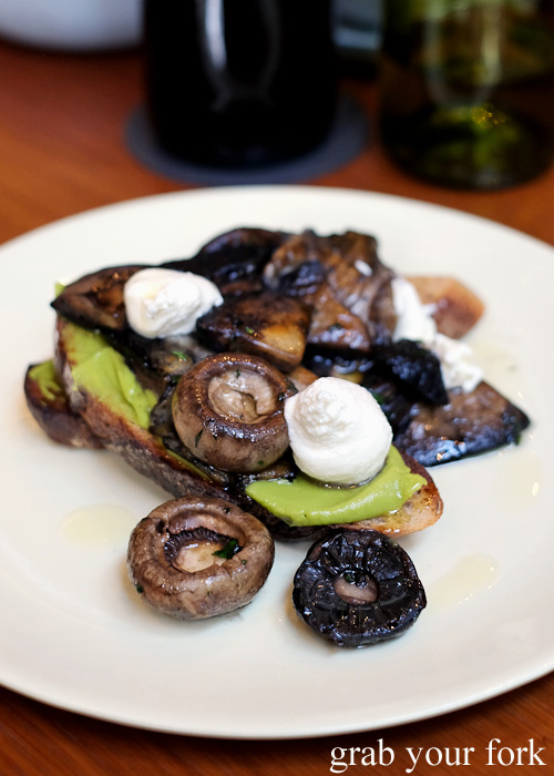Mushrooms on rye at Kensington Street Social in Chippendale