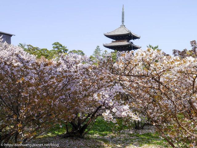 京都-66
