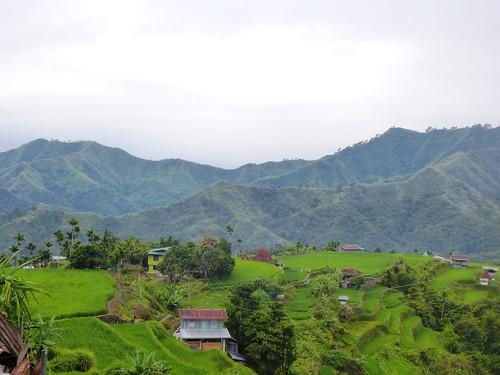 P16-Luzon-Mayoyao-Terrasses (3)