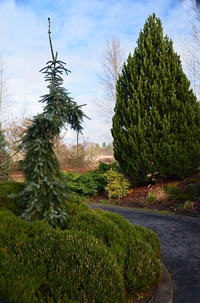 The Oregon Garden, Silverton, OR