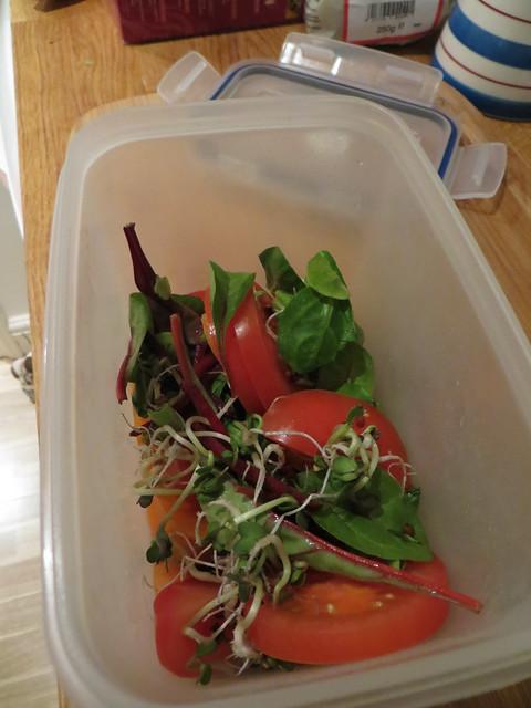 Cleanse Day 2 - Plain Salad