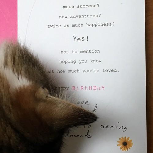 sweetest card 2