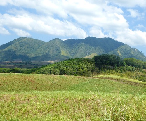 P16-Negros-Bacolod-San Carlos-route (24)