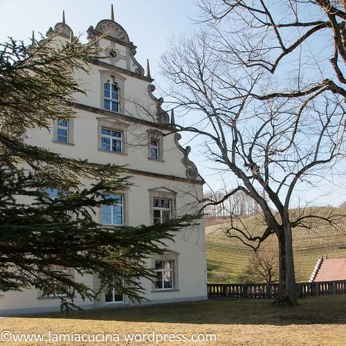 CH-5108 Schloss Kasteln 2016 03 10_0424
