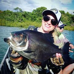 Enquanto o namorado tenta...a @luanakarine mostra uma bela piranha preta fisgada em Tocantins.  #pescaamadora #pesqueesolte #baitcast #pescaesportiva #sportfishing #fishing #flyfishing #fish #bassfishing #pescador #angler #anglerapproved #piranha #fly #la