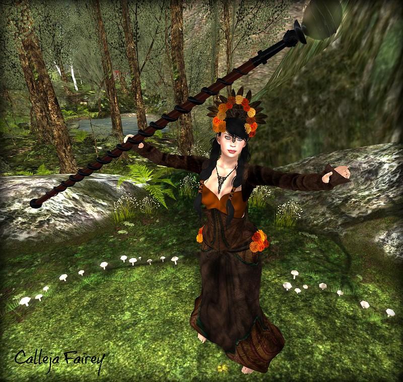 FairyRing3
