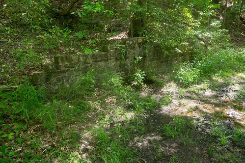 Todd Creek spring - 1