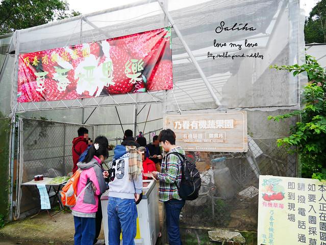 台北內湖景點推薦採草莓下午茶草莓園莓圃 (1)