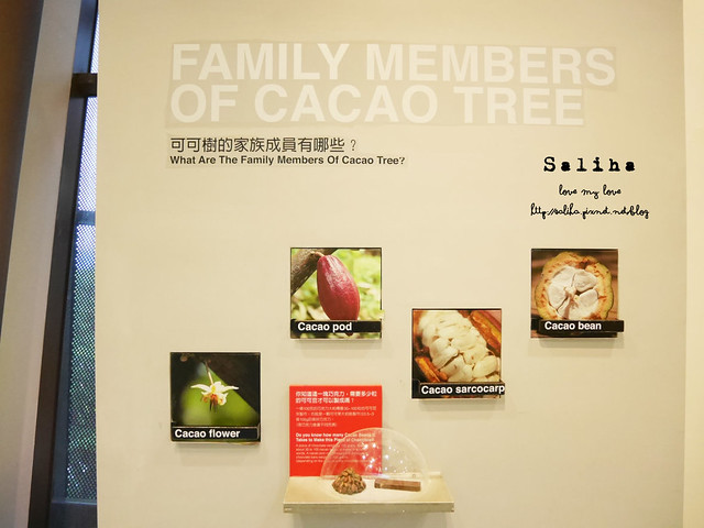 桃園一日遊景點八德宏亞巧克力共和國博物館 (10)