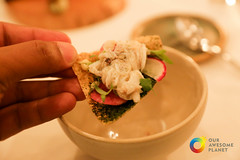 Six Hands Dinner-5.jpg