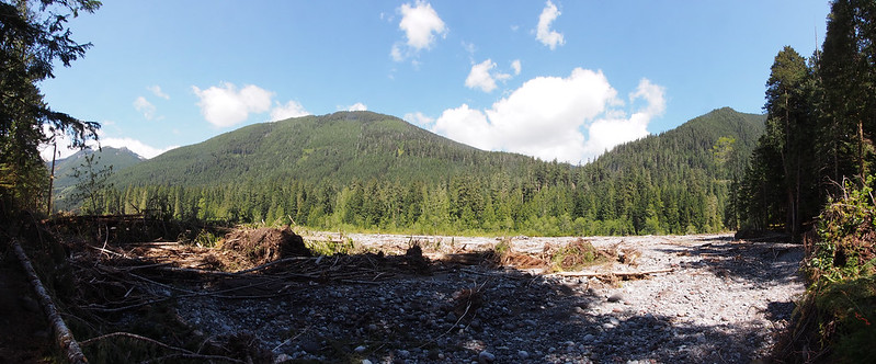 Carbon River: Taken at the washout.