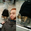 Me and anonymous Cat waiting the train :D #trainstation #funny #Cat #travel