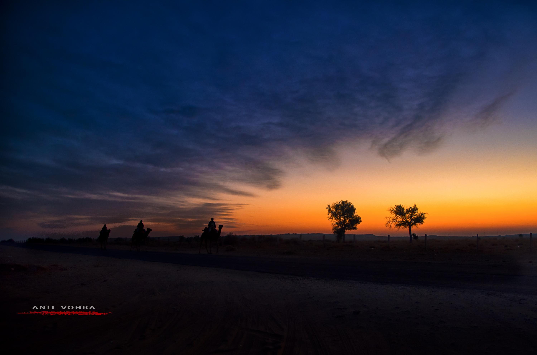 Morning @ Jaisalmer
