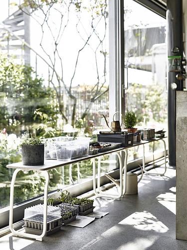 03-huerto-urbano-decoracion-con-plantas-ikea-sostenible