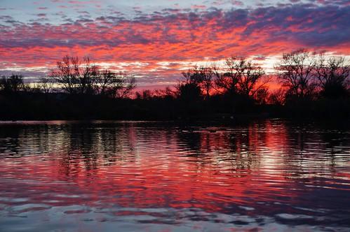 california sunset sky reflection water losangeles pond sanfernandovalley pw wildlifepreserve sepulvedabasin birdpreserve woodleyavenuepark
