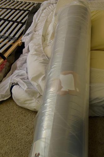 Teddy Bear Flattened Into Mattress Roll