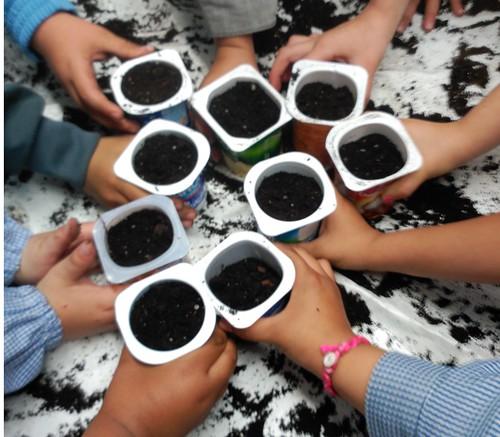 Educación Ambiental Niños